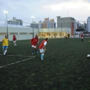 campo-futebol-suico-paula-ramos-2